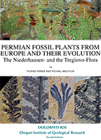 Permian Fossil Plants from Europe and their Evolution